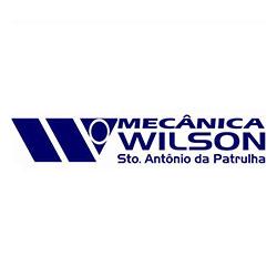 wilson-cliente